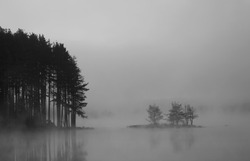 black and white  abstract misty lake in autumn sunrise