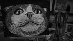 Black and White, Painting and coloring of  cute  cat