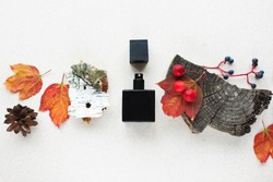 black perfume bottle on a background of autumn leaves, apples, and fragments of wooden bark. Concept of autumn woody fruity scent. Copy space