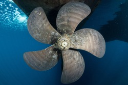 5 blade propeller underneath boat in clear water