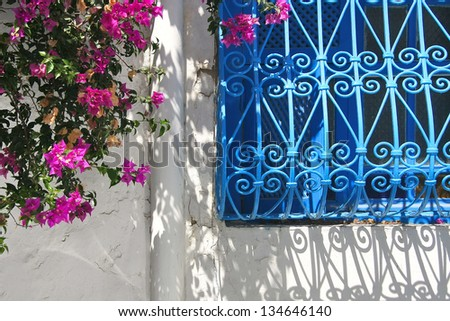 Blue window and flowers