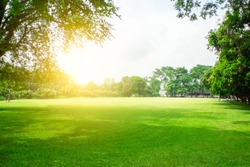 ฺBlurred green lawn and sun light