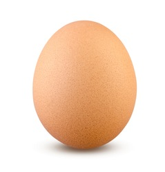 Boiled or Fresh Chicken Egg on Isolated White Background Close Up.