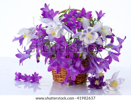 bouquet of flowers bells
