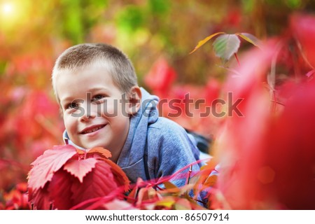boy in the rad leaves