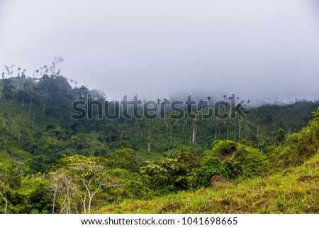 Shutterstock  Briceño, Colombia, Antioquia, former territory where the farc guerrilla group operated, this is located in northern Colombia and is occupied by the ELN guerrillas