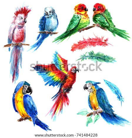 Bright parrots in the style of watercolors