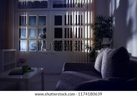 burglary breaking into a home at night through a back door Stockfoto ©