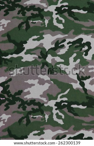 camouflage background or texture
