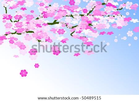 Card of cherry tree branch
