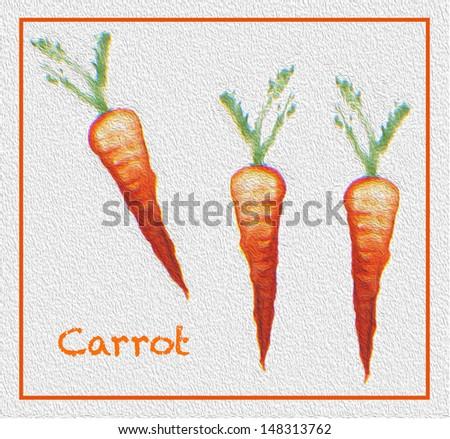 carrots vegetable original art  illustration  painting on a white background