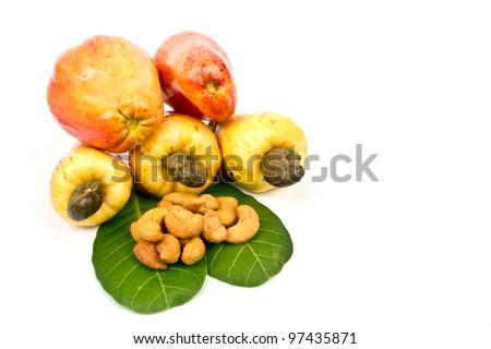 Cashew Nut Apple  and Fresh Cashew Nut