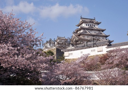 Castle of Himeji with spring cherry blossoms .Japan-1-7