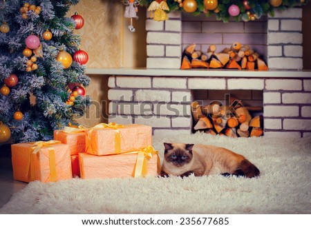 Cat lying on fireplace near Christmas tree and presents