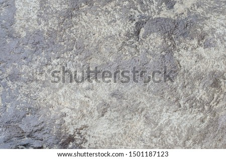 cement for background Cement floor #1501187123