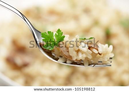 Cep  risotto / risotto mushroom  on a fork. Italian cuisine