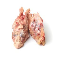Chicken carcass Chicken Skeleton  on White Background