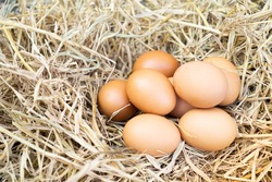 Chicken eggs are foods that are rich in protein and vitamins, strengthen the body, repair the wear and tear, help keep the body healthy and full of stomach, as well as help control weight.