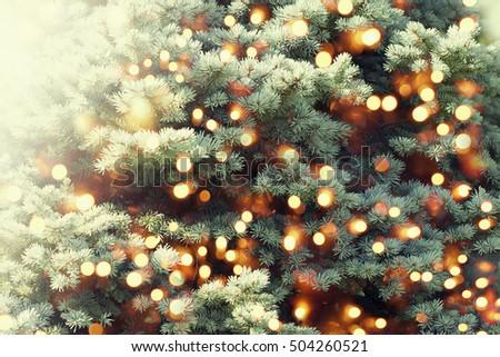 Christmas tree background. #504260521