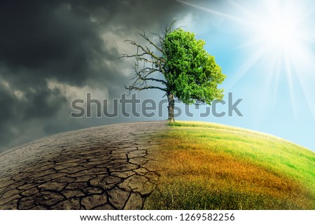 climate change withered earth #1269582256