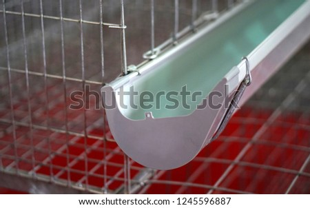 Closeup view of Empty rearing Cages of poultry equipment for broilers chicken in Modern industrial poultry farm,an agribusiness