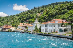 Coast of the Princes' Islands. Turkey. Bosphorus. A bright sunny day, drowning in the greenery of the birch,  sea, small houses on the shore