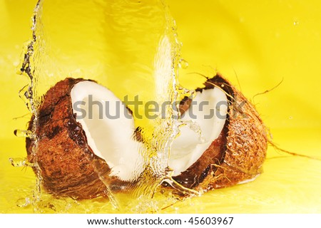 Coconut with  water splash on yellow close up