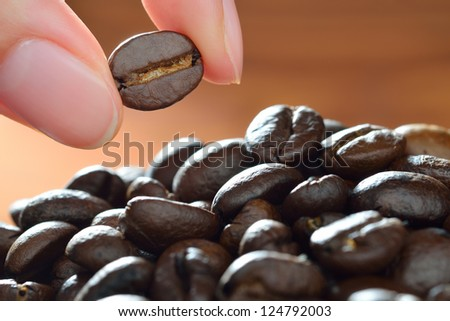 coffee bean with focus on one - stock photo