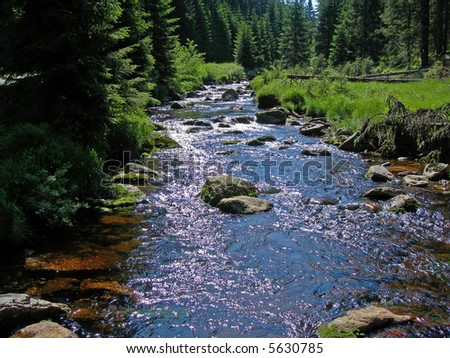 Cold and crystal clear wild brook full of boulders in the mountains