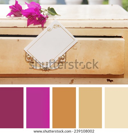 color palette swatches. pastel hues