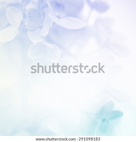 colorful flowers in soft color and blur style for background