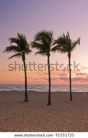 Colorful Tropical summer paradise in Miami Beach Florida with silhouettes of palm trees and ocean in the background at sunrise, with pristine sands and cloudy sky