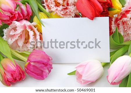 Colorful tulips with blank note isolated on white background