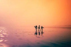 Colourful image. Early morning, surfers walking on the beach. Three surfers, walk along an ocean beach with their surfboards in hand.