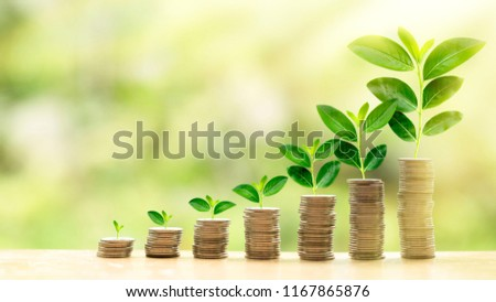 Concept of investment like a growing plant, There is return and profit from investing fund. It is collected coin and golden bokeh background. It is wallpaper or backdrop for investment and cumulative