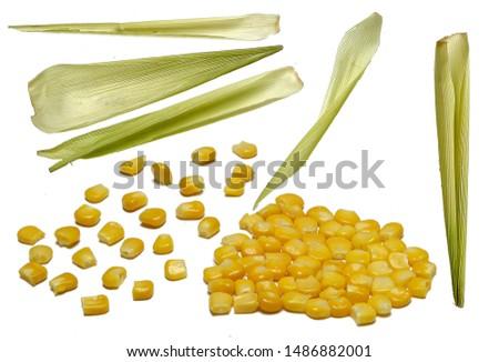 corn  corn cob  corn straw food                         #1486882001