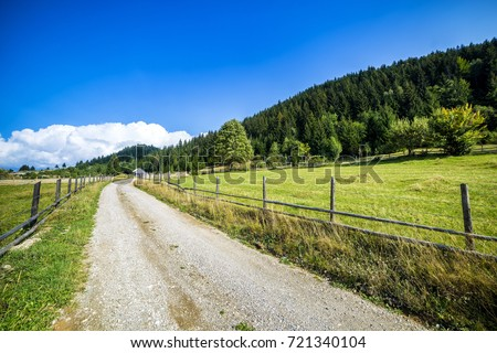 Country road in the mountains woods #721340104