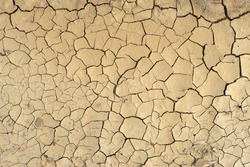 Cracked soil texture background. Crack formation also occurs in clay-bearing soils as a result of a reduction in water content.