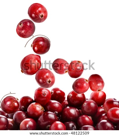 cranberry fall  isolated on white background