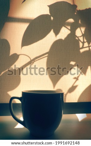 Cup of coffee on windowsill closed curtains sunrise or sunset shadows and light , crossing of plant shadows on  beige textile surface . Minimalist still life . Cozy home aestheics