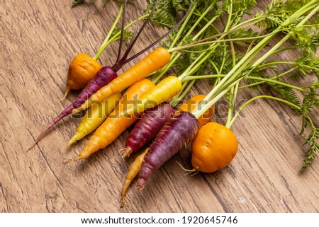 Cute beautiful fresh carrot photo