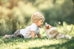 Cute little baby boy sitting on the grass in summer, on a Sunny day, playing with a small puppy. Selective focus, space for text
