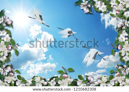 3d background, Branch blossoming apple-tree and cranes on blue sky background.