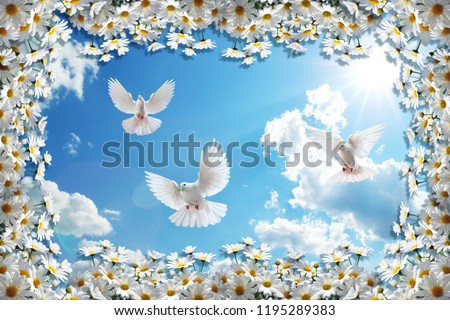 3d background, chamomiles, blue sky and pigeons. High-definition 3d background will visually expand the space in a room, bring more light and become an accent in the interior.