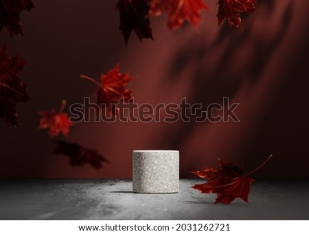 3D background, gray stone pedestal podium on natural shadow, leaf falling , burgundy red autumn backdrop. Product promotion Beauty cosmetics display. Studio Minimal concrete showcase stand 3D render