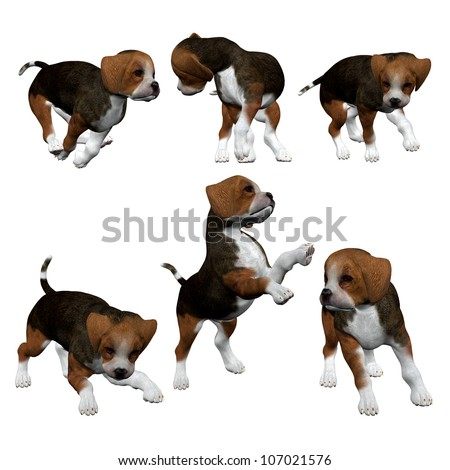 3D Beagle Puppies - Isolated