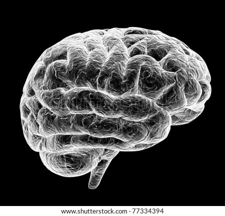 3d brain isolated on black background