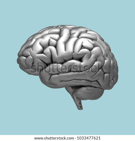 3D chrome metalic brain rendering illustration isolated on pastel blue background with clipping path for use in any backdrop
