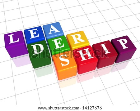 3d colour boxes with text - leadership, word