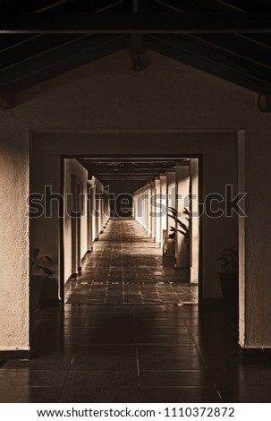 3D Continuous corridors with a door at the end          #1110372872